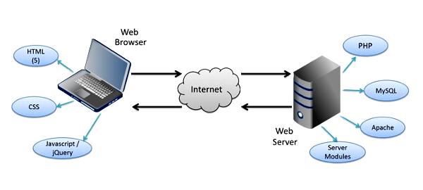 Sviluppo gestionali web personalizzati